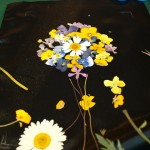 4 Kytica z lisovaných kvetov (Petra Čergeťová)