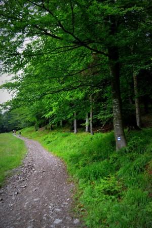 Cesta na Minčol