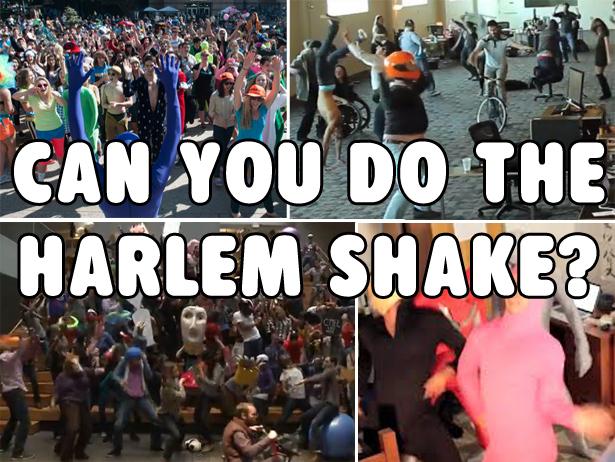 harlem shake 1