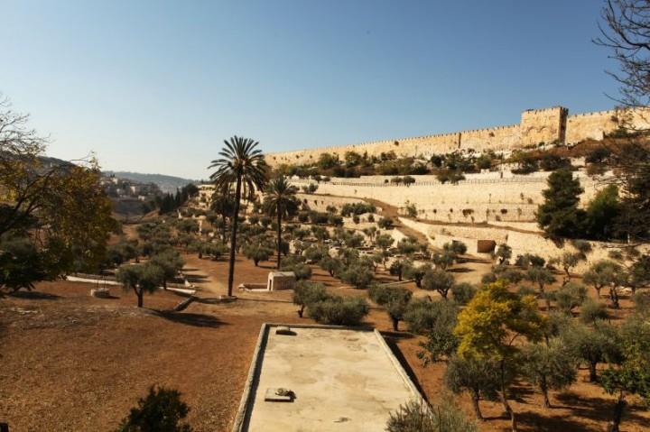 Pohľad na hradby obkolesujúce celé Staré mesto v Jeruzaleme.  Hradby boli postavené v 15. storočí Sulejmanom I. Sú dlhé 4 kilometre a ich priemerná výška je 12 metrov