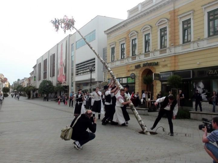 Stavanie mája Nitra 2014 (7)