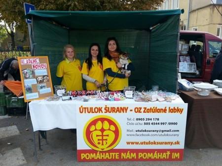 Členky OZ Zatúlané labky aj s predsedníčkou Kristínou Páleníkovou (prvá sprava so psíkom)