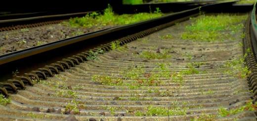 vlaky, zdroj pixabay.com