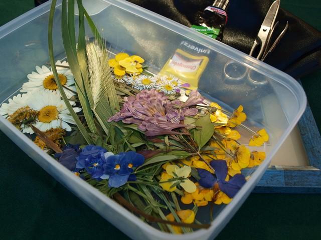1 Kytica z lisovaných kvetov (Petra Čergeťová)