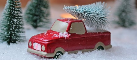 christmas-tree-1856343_640